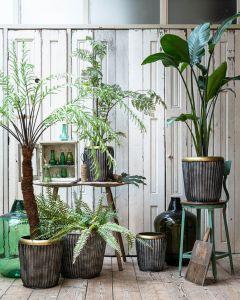 Plantenpot set EW-5290
